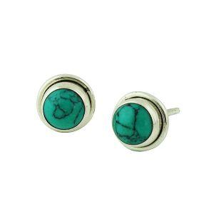 Encased Turquoise Simple Stud Earrings