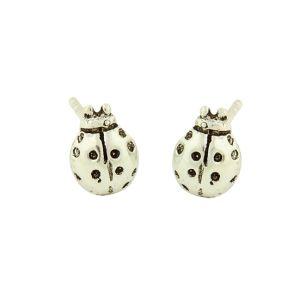 Silver Ladybird Stud Earrings